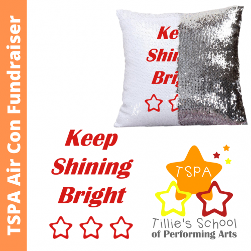 TSPA Fundraiser Reversible Sequin Cushion Cover